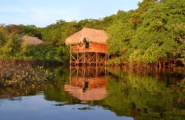 juma-amazon-lodge-3